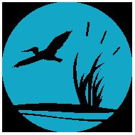 Gulf-Coast_Jiu_Jitsu-logo-ICON